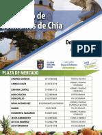 DIRECTORIO V1.pdf