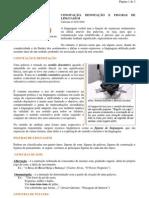 Língua Portuguesa - portaltosabendo - Conotação, Denotação e Figuras de Linguagem