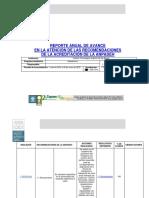 2019 Primera Acreditación Arquitectura Informe Anual 2019 ITSLR.pdf