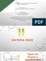 Presentación de los tres sistemas del cuerpo humano- Nataly Triviño