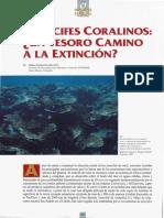 1997-V15-N1-Articulos-Art 1.3.pdf