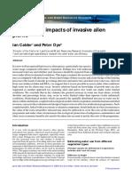 Invasive Alien Eucalyptus Impact