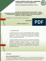 PRESENTACION PECUARIA.pptx