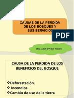 clase 4. Causa de la perdida de los bosques-deforestación.pptx