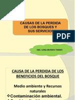 clase 6. Causa de la perdida de los bosques-Contaminac amb..pptx