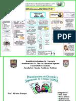 91602277-Esquema-Divorcios-Reforma-Lopnna-1.pdf
