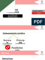 Diapositivas Curso de Introducción Al Derecho Administrativo 1