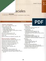 Cap 12 Huesos faciales.pdf