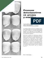 proceso deterioro semilla
