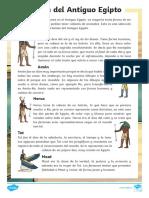 Comprensión lectora - Los dioses del Antiguo Egipto