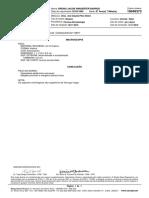19048373.pdf