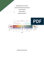 Informe Acidos y Bases - Quimica 2