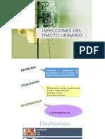 Tracto urinario