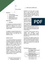 Informe Practica 7.docx