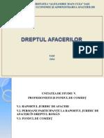 prezentare CURS 5.pdf