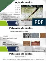 Patologia de suelos.pptx