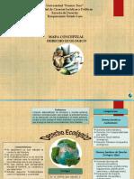 Mapa Conceptual Derecho Ecologico