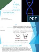 Estructura_y_Funcion_del_ADN_.pdf