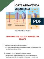 Aula 5 - Transporte através da Membrana Plasmatic