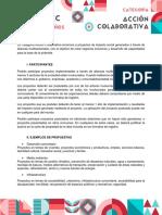 Convocatoria Accion Colaborativa 2020