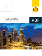 natural-gas-providing-more-and-cleaner-energy-spanish.pdf