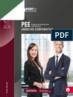 1PEE DC Final.pdf