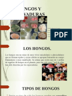 SEMINARIO DE HONGOS Y LEVADURAS