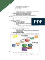 BA401_Analyzing the internal organization.docx