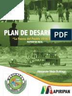 PDM 2016.2019.pdf