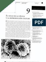 09_Ciclo de La Celula
