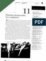 11 Patrones Mendelianos