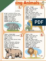 describing-animals-1_66078.doc