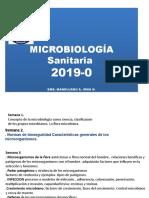 FLORA O MICROBIOTA 2