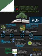 LA EDUCACIÓN AMBIENTAL ERIKA.pptx