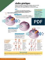Infographie Carrefour - Au Cœur de Nos Cellules (Page 4) - Novembre 2000