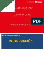 Auditoria al IVA