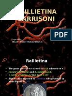 Railletina_garrisoni-20.pptx