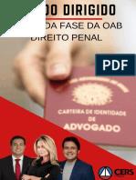 213841ESTUDO_DIRIGIDO_IV.pdf