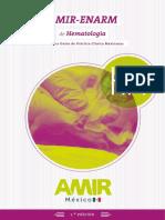 Manual-AMIR-MEXICO-HM1aEdicion.pdf