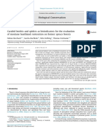 Carabid beetles and spiders as bioindicators for the evaluation of montane heathland restoration on former spruce forests