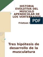 Historia evolutiva del músculo apendicular de los vertebrados