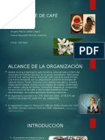 PRESENTACION DEL ALCANCE
