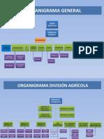 Organigrama General Marzo 2017 (1)