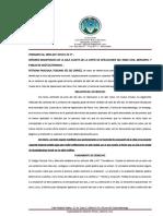 ORDINARIO 08003-2017-00167-5 RECURSO DE ACLARACION SENTENCIA SALA - PETRONA