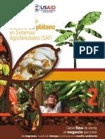 CACAO-PLATANO USAID