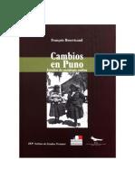 Cambios en Puno. Estudios de sociología andina