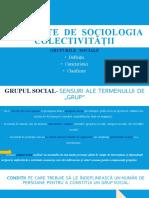 ELEMENTE  DE  SOCIOLOGIA COLECTIVITĂȚII