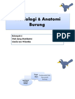 339815585-Morfologi-Anatomi-Burung