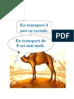 probleme-ilustrate-DESERT
