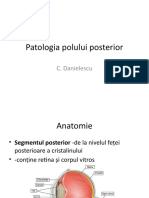 Patologia polului posterior